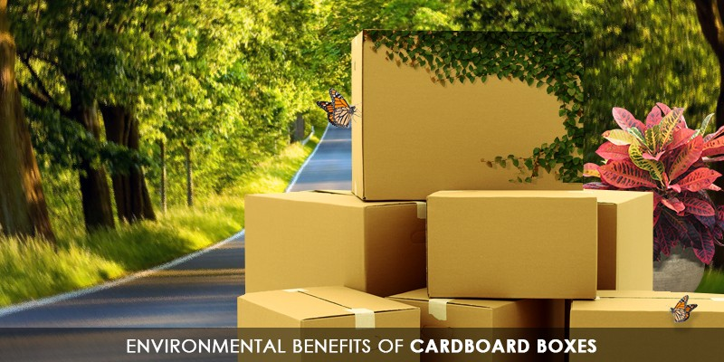 Environmental benefits of cardboard boxes