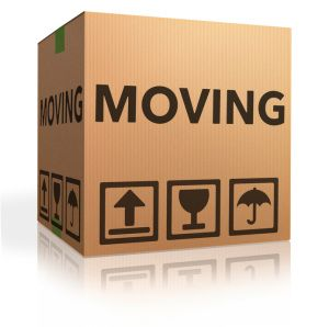 5 Steps to take your house move idea from concept to reality