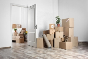 boxes for house removal
