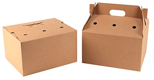 Cardboard Boxes with handle holes
